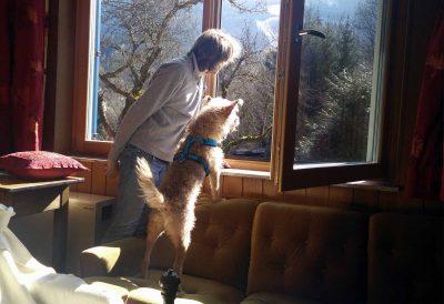 Soki und Mitch schauen aus dem Fenster