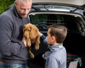 Ein Welpe wird im Arm gehalten und von einem Kind gestreichelt. Im Hintergrund ein Travall Hundegitter in einem Auto.